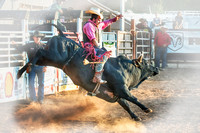 Penn Valley Rodeos