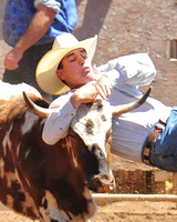2008 Penn Valley Rodeo